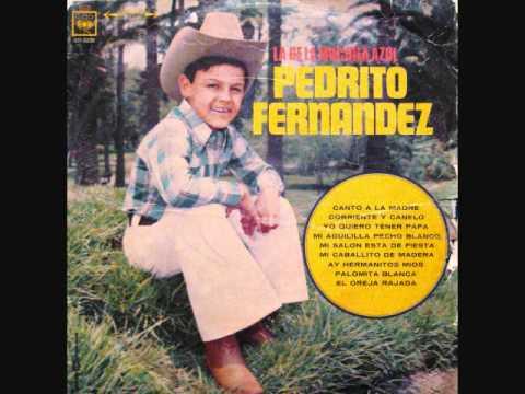 canto_a_la_madre_pedro_fernandez